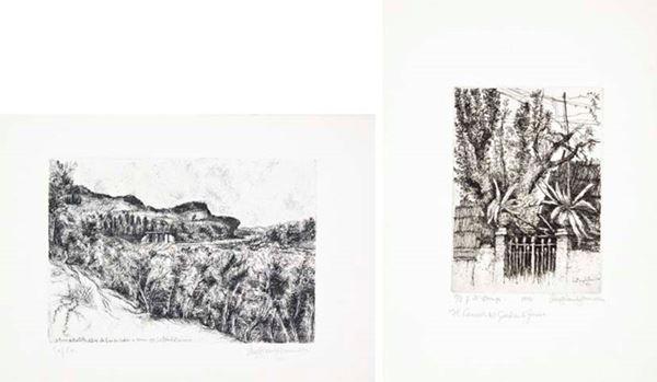 LINO BIANCHI BARRIVIERA - Il bosco del Montello - Il cancello di Zorio