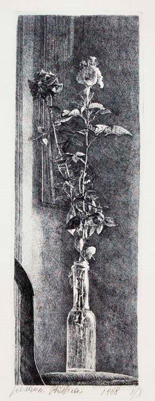GIOVANNI BARBISAN - Rose 1968