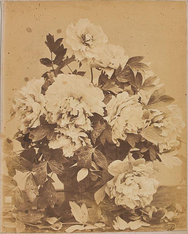 CHARLES AUBRY - Bouquet de pivoines