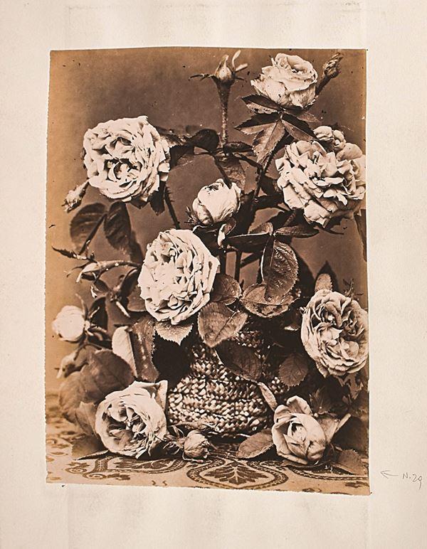 ANONIMO SCUOLA FRANCESE - Composizione di fiori